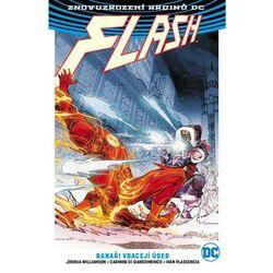 Flash 3: Ranaři vracejí úder (Znovuzrození hrdinů DC)